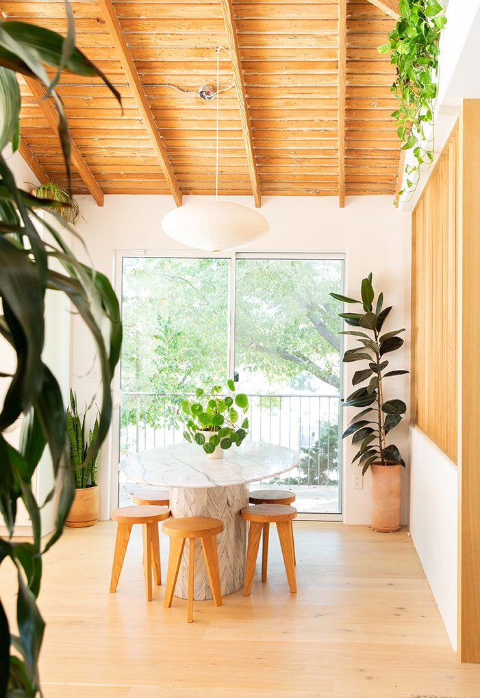 The 9 Easiest House Plants To Take Care Of (That We Use All The Time) - Bobby Berk